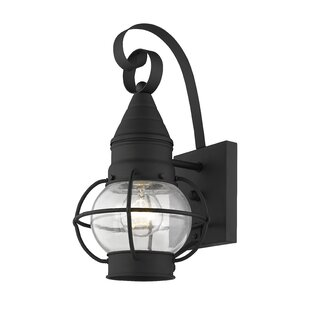 Elmhurst 1-Light Outdoor Wall Lantern by Breakwater Bay