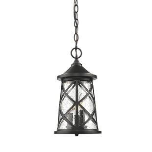 Evangeline 3-Light Outdoor Hanging Lantern