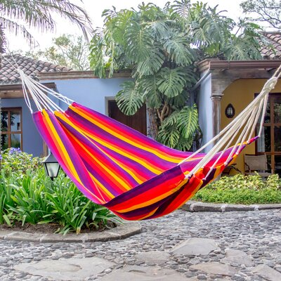Rigsby Hand-Woven Single Tree Hammock by Bay Isle Home 2020 Sale