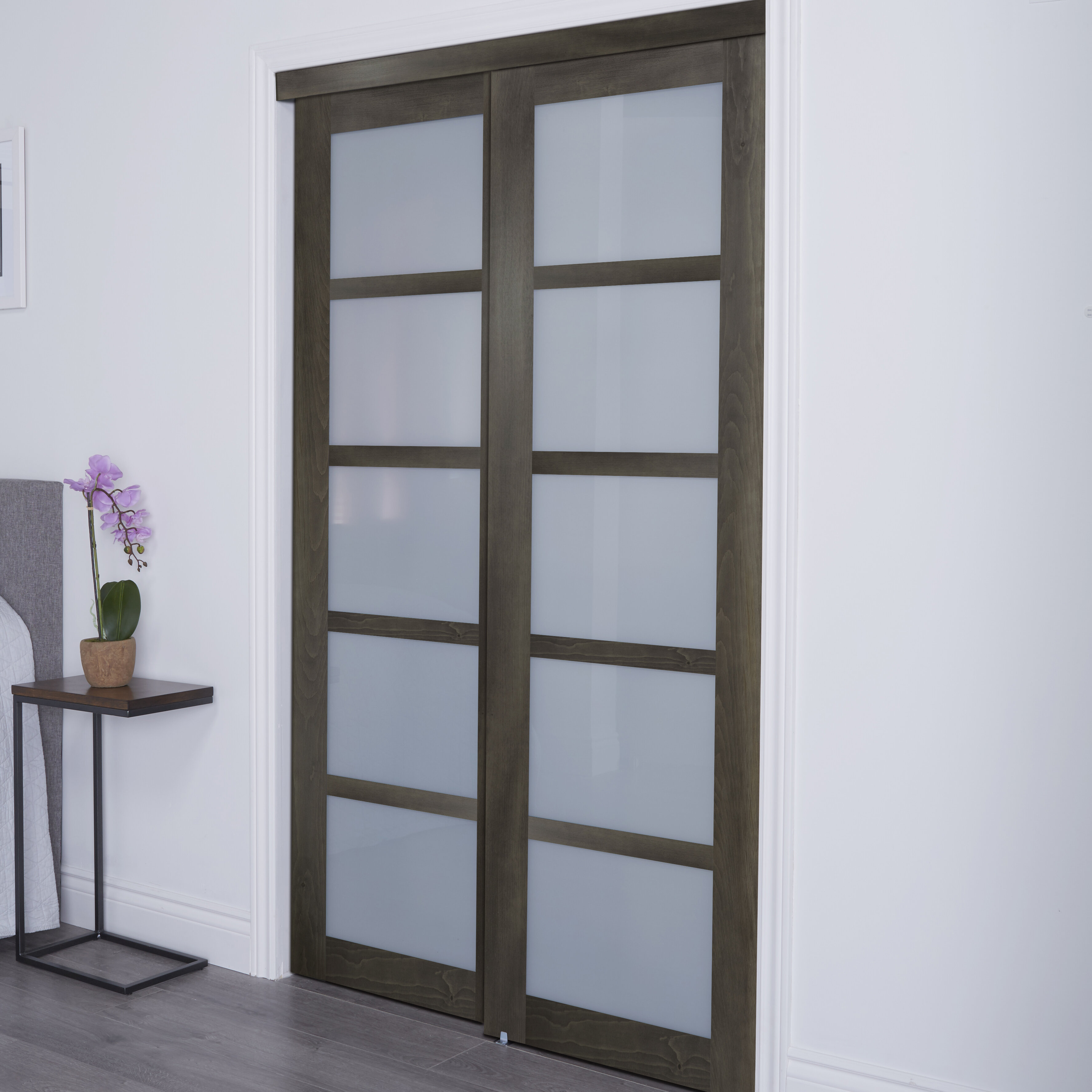 Baldarassario Glass Sliding Closet Doors With Installation Hardware Kit