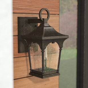 Alena 1-Light Outdoor Wall Lantern