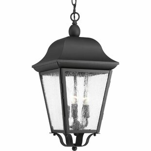 Ephraim 3-Light Outdoor Hanging Lantern by Darby Home Co