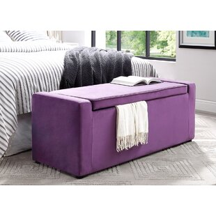 Fasching Upholstered Shoe Storage Bench