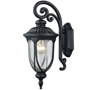 Best Reviews Adrienne 1-Light Outdoor Wall Sconce By Darby Home Co