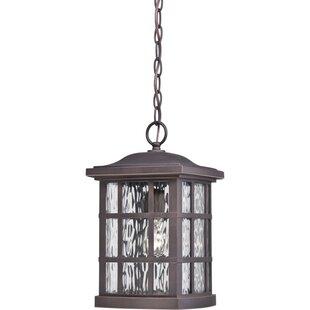 Great Price Lockett 1-Light Outdoor Hanging Lantern By Brayden Studio