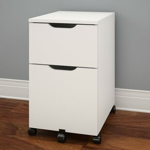 Latitude Run Kurtis 2-Drawer Mobile Vertical File
