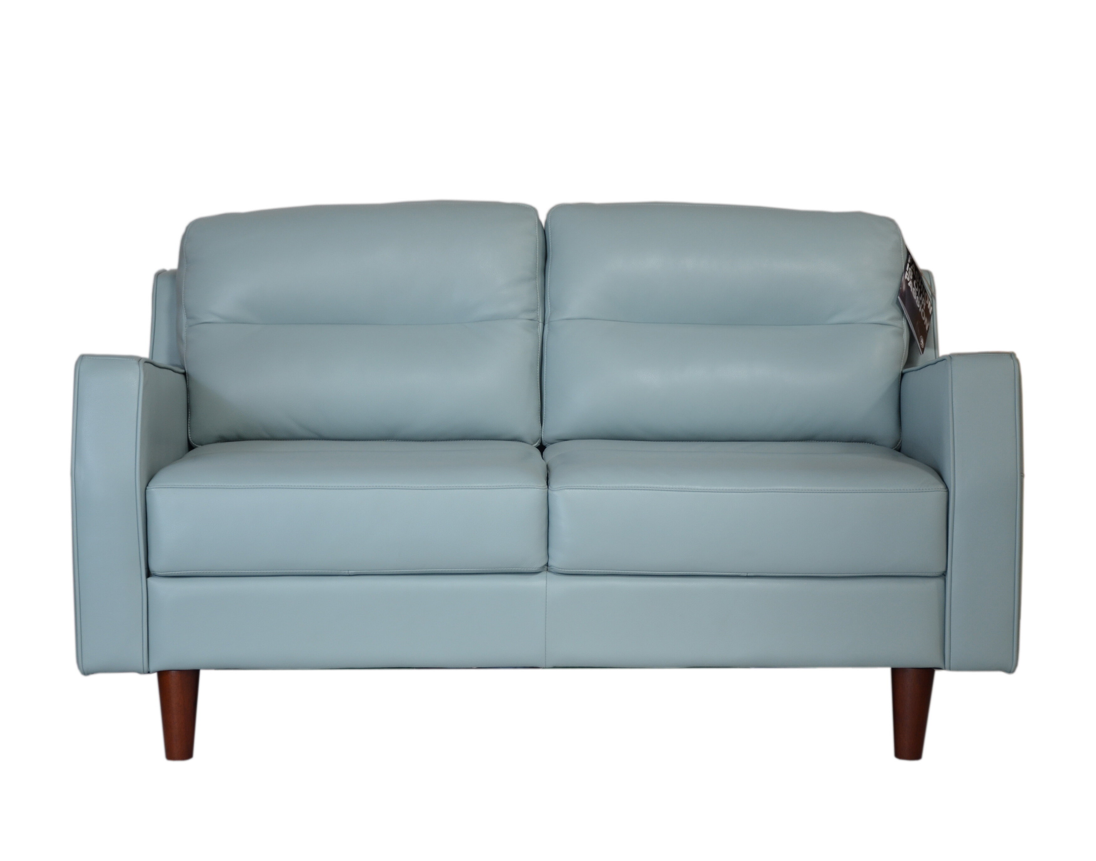 Teal Leather Loveseat Coffee Tables Ideas