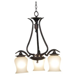 Wildon Home ® Bienville 3-Light Shaded Chandelier