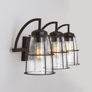 Mansour 3-Light Vanity Light by Breakwater Bay