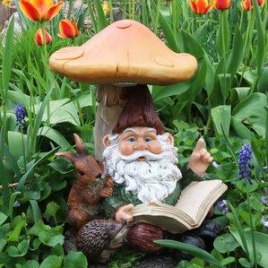 Book Worm Bernard The Outdoor Garden Gnome With Statue