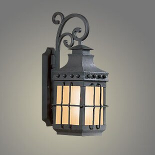 Theodore 1-Light Outdoor Wall Lantern in Natural Bronze by Darby Home Co