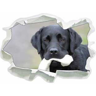 Black Labrador With Toy Wall Sticker By East Urban Home