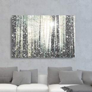 850f29ca8a1  Magical Forest Silver  Graphic Art Print on Canvas