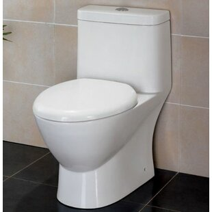 EAGO Modern Dual Flush Elongated One-Piec..