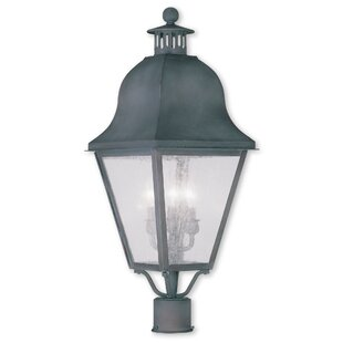 Goodhue Outdoor 2-Light Lanter..