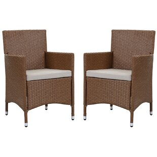 Astrid Patio Dining Chair with Cushion (Set of 2)