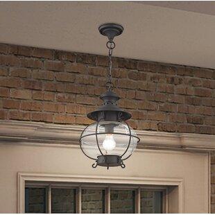 Longshore Tides Shielo 1-Light Outdoor Hanging Lantern