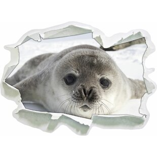 Sweet Seal Pup Wall Sticker By East Urban Home