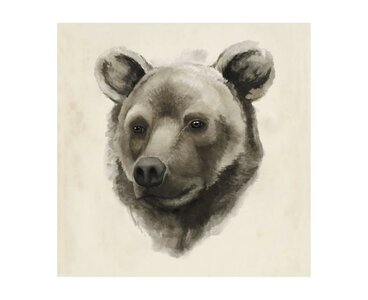 Chelsea Art Studio Western Animal I Graphic Art Print