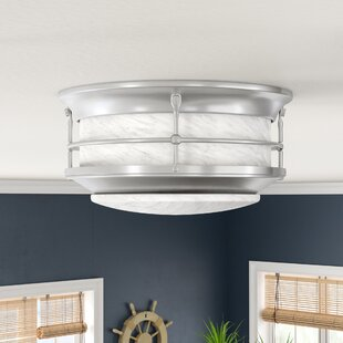 Breakwater Bay Ellie 2-Light Flush Mount