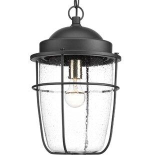 Kearney 1-Light Outdoor Hanging Lantern by Breakwater Bay