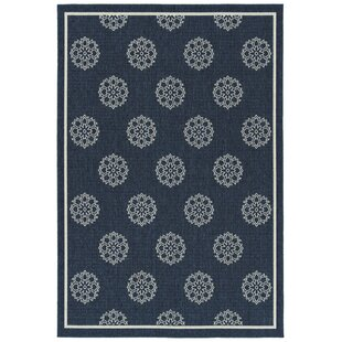Mikole Navy Indoor/Outdoor Area Rug