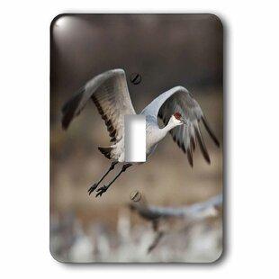 Crane Birds Wayfair