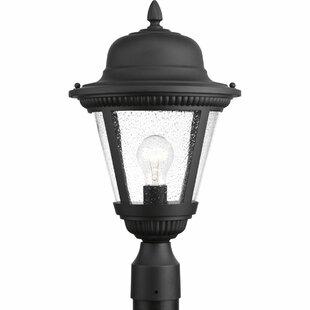 Triplehorn 1-Light Rustic Lantern Head by Alcott Hill