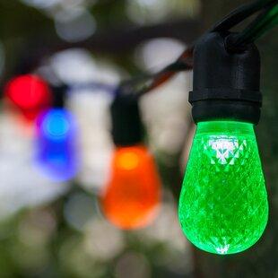 Read Reviews 24-Light Globe String Lights By Wintergreen Lighting