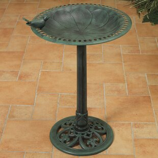 Gerson International Resin Birdbath