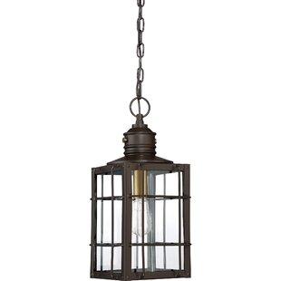Longshore Tides Victorina 1-Light Outdoor Hanging Lantern