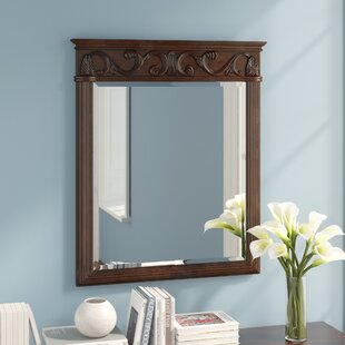 Compare & Buy Alexis Bathroom/Vanity Mirror ByAstoria Grand