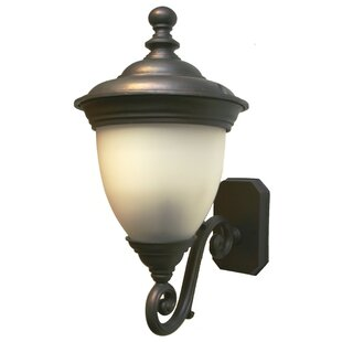 Low priced Phillipstown 3-Light Outdoor Sconce By Alcott Hill