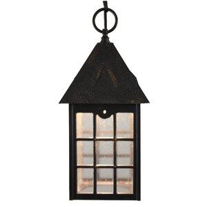 Kiss Series 1-Light Outdoor Hanging Lantern