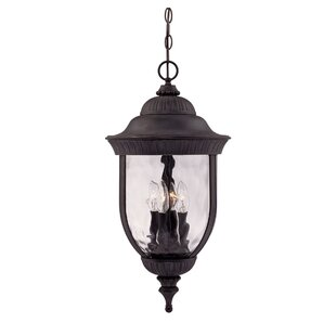 Find the perfect Brannon 3-Light Outdoor Hanging Lantern By Alcott Hill