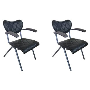 Williston Forge Roxie Arm Chair (Set of 2)
