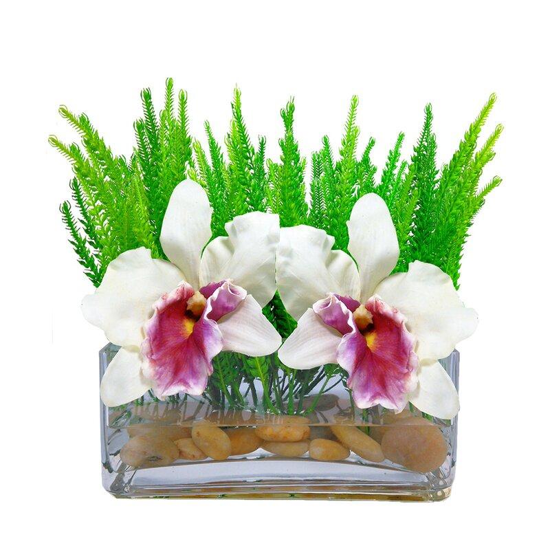Bloomsbury Market Cattleya Rectangular Orchid Floral Arrangement In