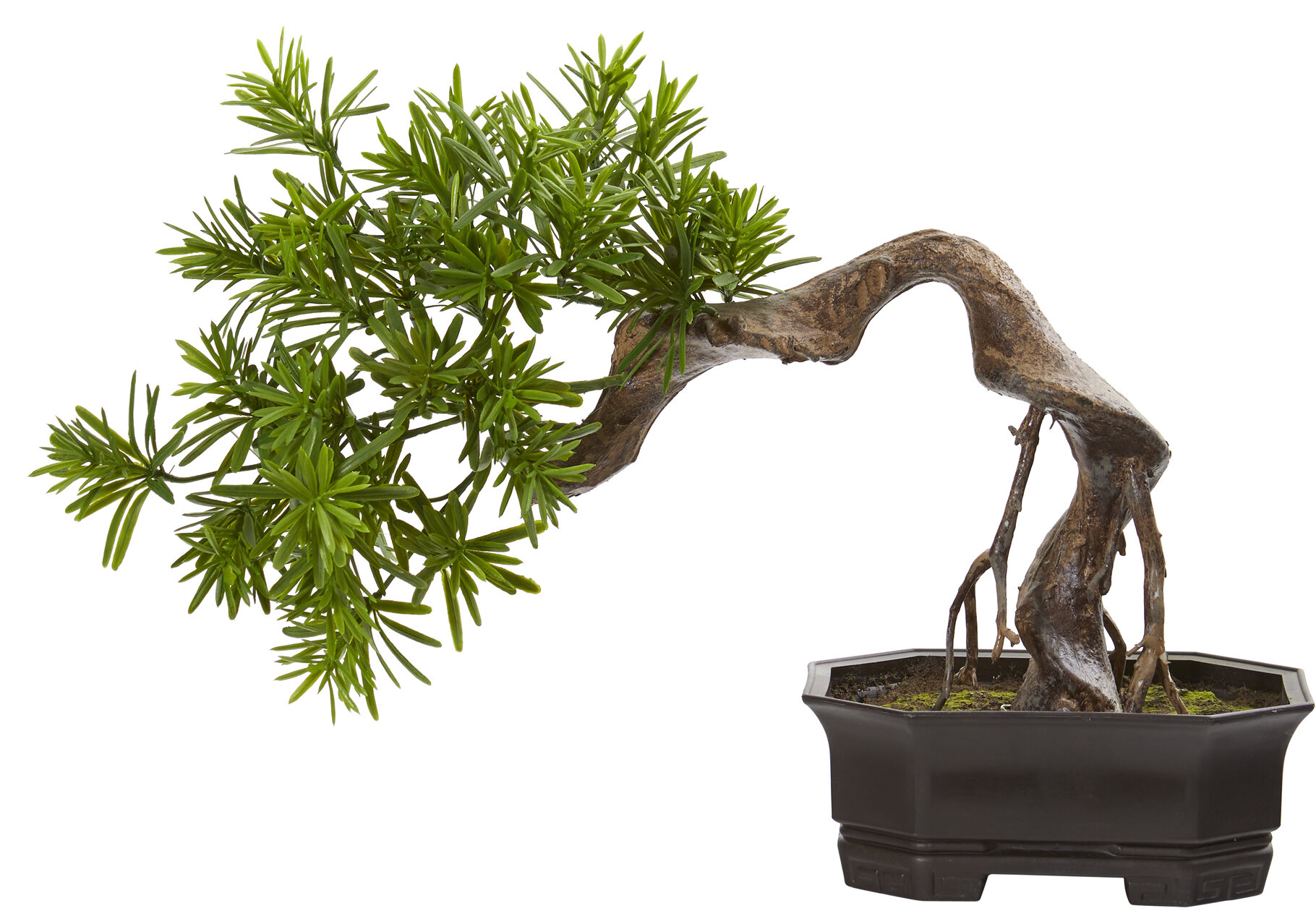World Menagerie Artificial Bonsai Tree In Pot Liner Wayfair