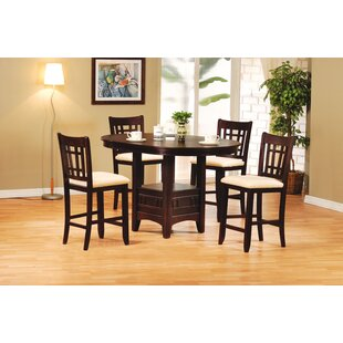 Epp 5 Piece Counter Height Extendable Dining Set by Darby Home Co