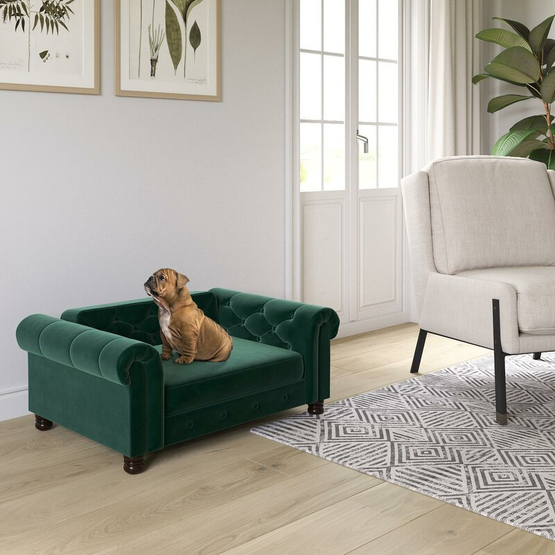 17 green ways for St. Patrick's Day | Isla Dog Sofa | Eat. Drink. Work. Play.