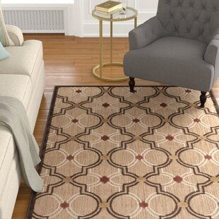 Carver Indoor/Outdoor Khaki Area Rug