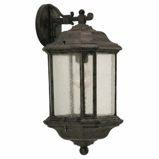 Darby Home Co Burtt 1-Light Outdoor Wall Lantern