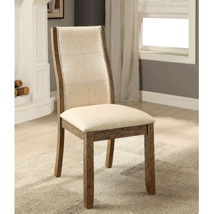 Bliven Solid Dining Chair (Set of 2)