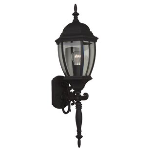 Charlton Home Oakhill 1-Light Traditional Outdoor Sconce