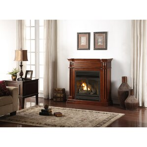 Gas & Propane Fireplaces You\'ll Love   Wayfair