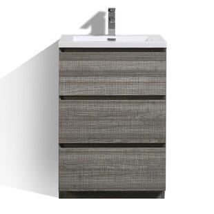 Riker Free Standing 24 Single Bathroom Vanity Set ByOrren Ellis