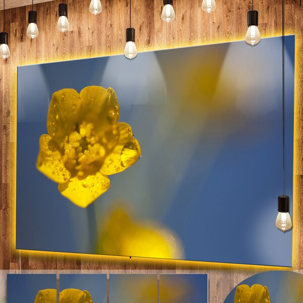 Yellow Flower Wall Art | Wayfair