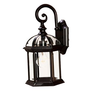Grenville 1-Light Outdoor Wall Lantern by Darby Home Co
