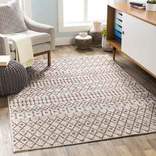 Gunter Bohemian Tan/Brown Indoor/Outdoor Area Rug