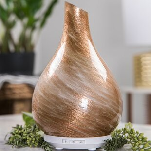 Glass Oil Diffuser | Wayfair